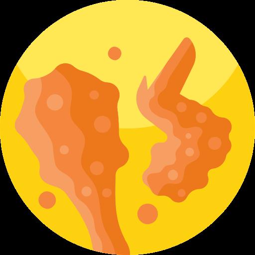fried-chicken (1)