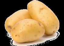img-populer-sayuran-4.png