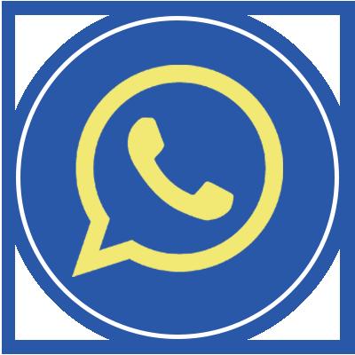 whatsappcall